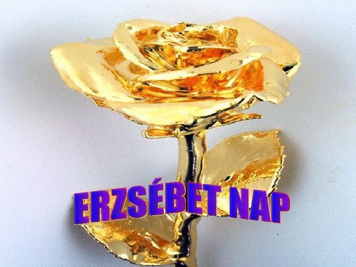 ERZSÉBET NAP