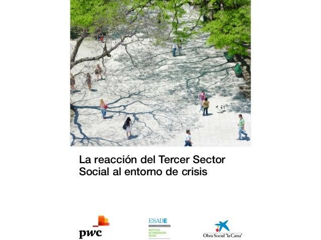 INFORME: La reacción del Tercer Sector Social al entorno de crisis