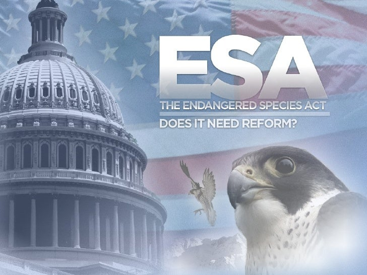 Endangered Species Act - Need for Reform?