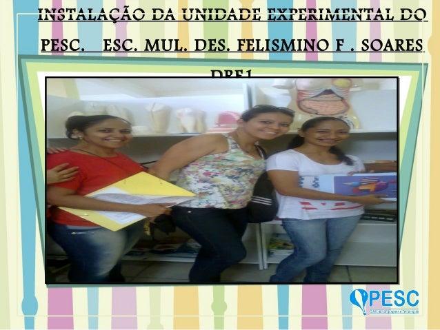 INSTALAÇÃO DA UNIDADE EXPERIMENTAL DOPESC. ESC. MUL. DES. FELISMINO F . SOARESDRE1