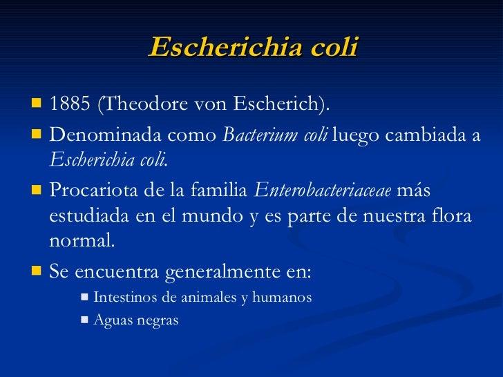 e coli escherichia coli essay Attachment i--final risk assessment of escherichia coli k-12 derivatives (february 1997) i introduction escherichia coli is one of a number of microorganisms which.