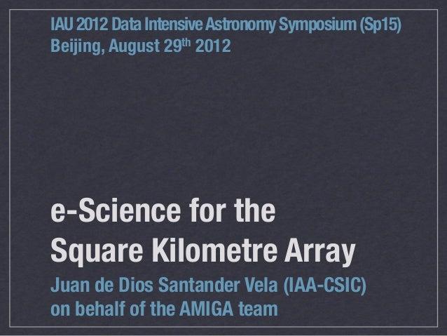 e-Science for the Science Kilometre Array