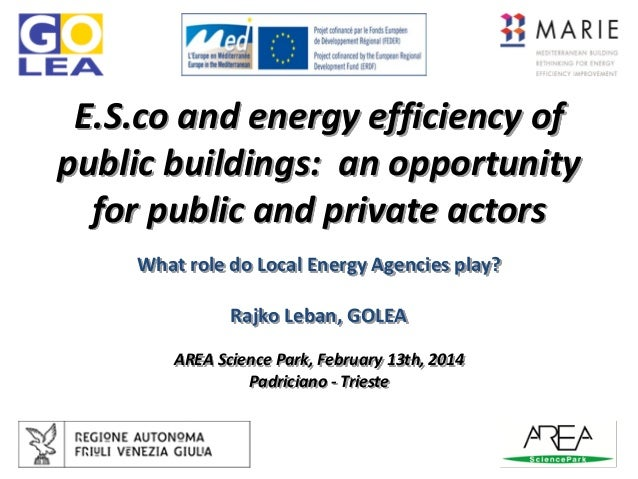 E.S.co and energy efficiency of public buildings: an opportunity for public and private actors What role do Local Energy A...