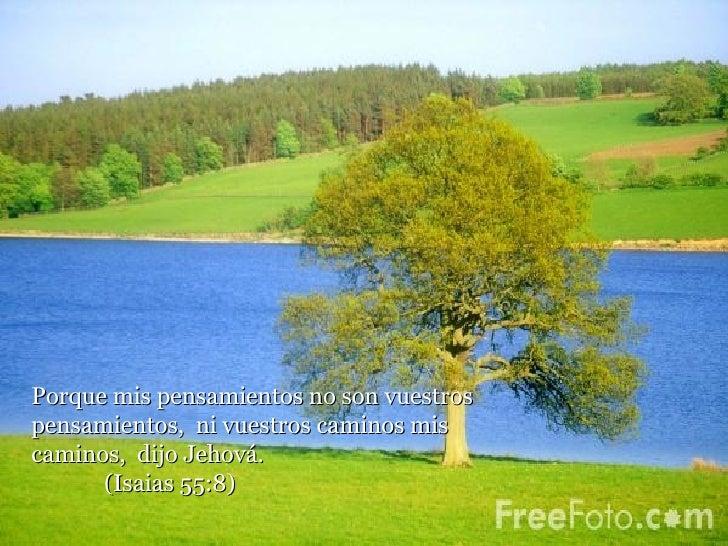 Porque mis pensamientos no son vuestros pensamientos,  ni vuestros caminos mis caminos,  dijo Jehová.  (Isaias 55:8)