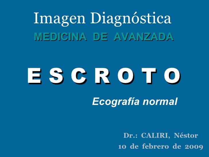 Imagen Diagnóstica MEDICINA  DE  AVANZADA E S C R O T O Ecografía normal Dr.:  CALIRI,  Néstor 10  de  febrero  de  2009