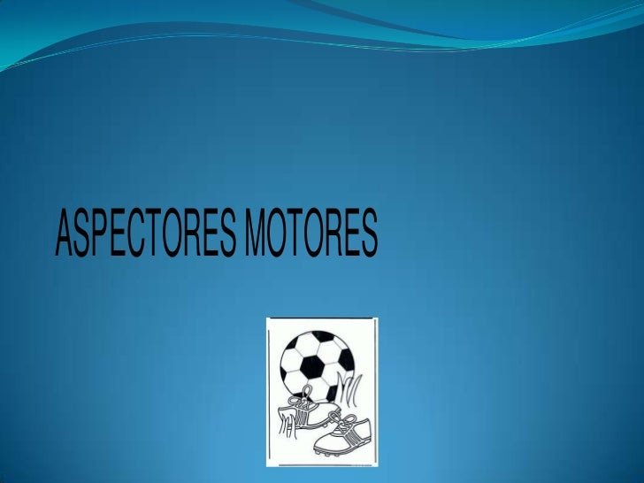ASPECTORES MOTORES