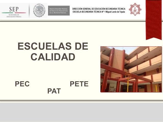 ESCUELAS DECALIDADPEC PETEPAT