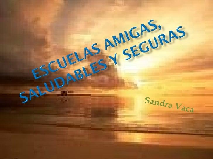 Sandra Vaca