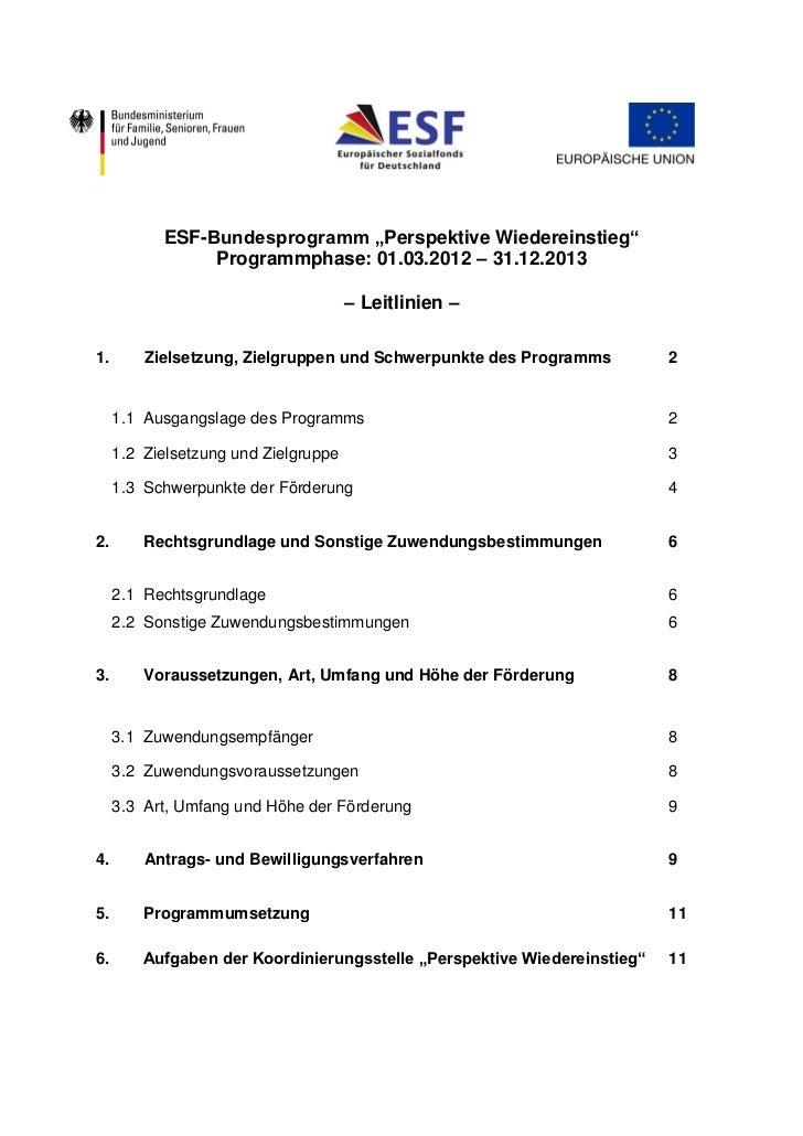 """ESF-Bundesprogramm """"Perspektive Wiedereinstieg""""                Programmphase: 01.03.2012 – 31.12.2013                     ..."""