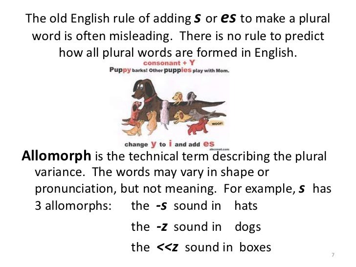 significance function phonological rules language Of phonology phonological rules change 2 replacing one with the other does not change the meaning doing phonology given a set of data from a language.