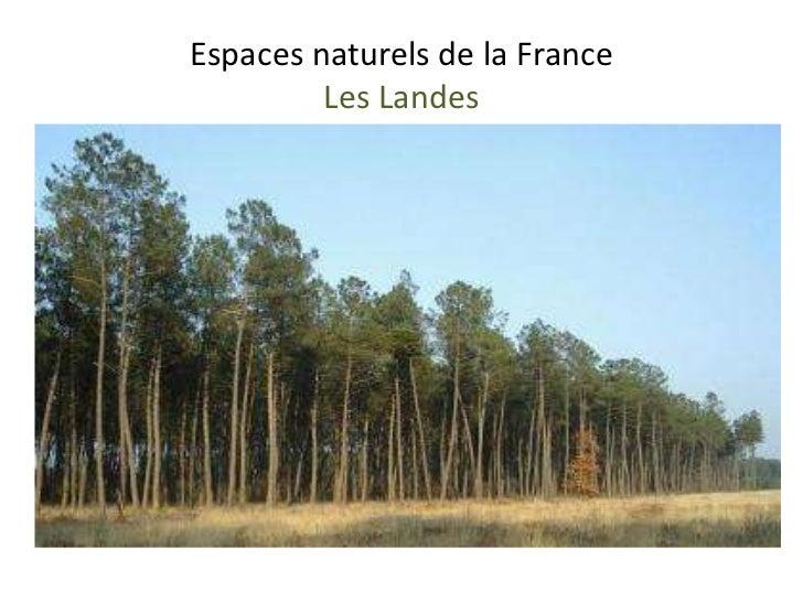Espaces naturels de la France         Les Landes