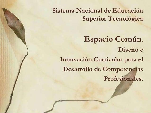 Sistema Nacional de Educación         Superior Tecnológica          Espacio Común.                      Diseño e  Innovaci...