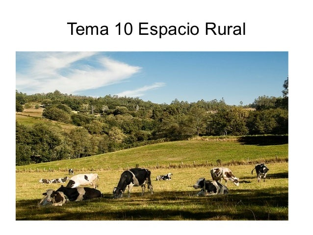 Tema 10 Espacio Rural