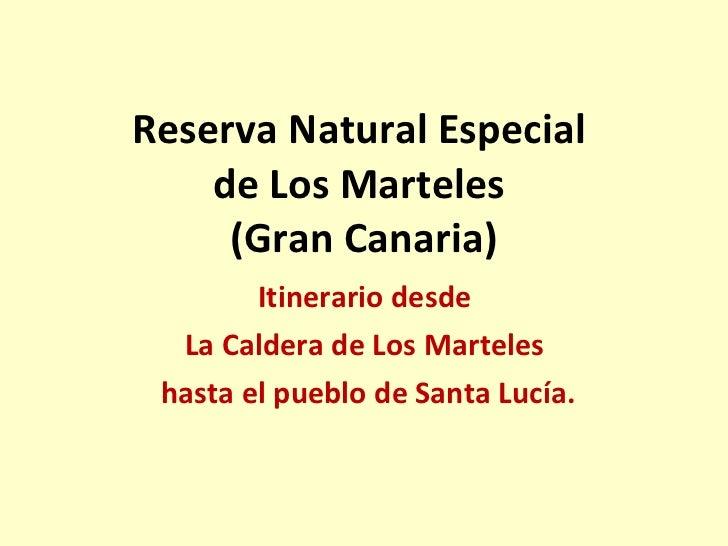 Camino en la Reserva Natural Especial de Los Marteles