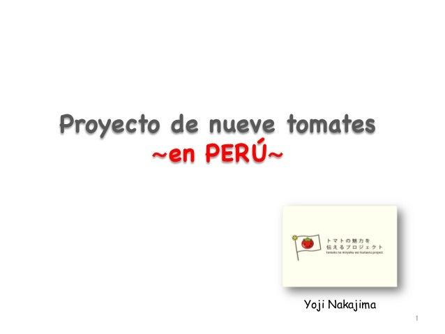 Proyecto de nueve tomates  〜en PERÚ〜  Yoji Nakajima 1