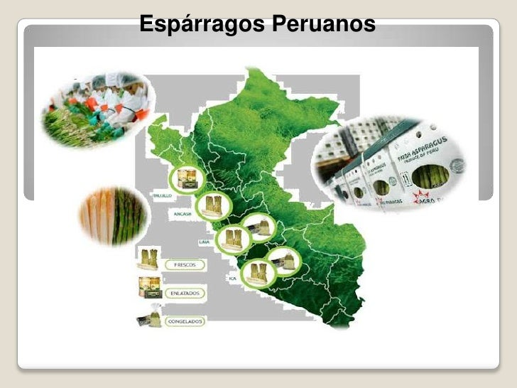 Esparragos peruanos