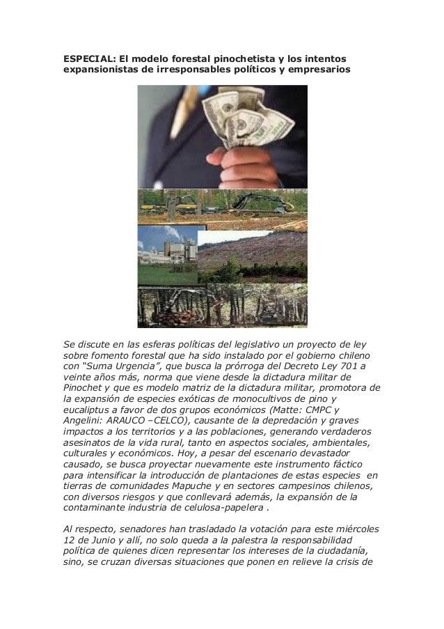 ESPECIAL artículos sobre modelo forestal en Chile y expansionismo de políticos y empresarios