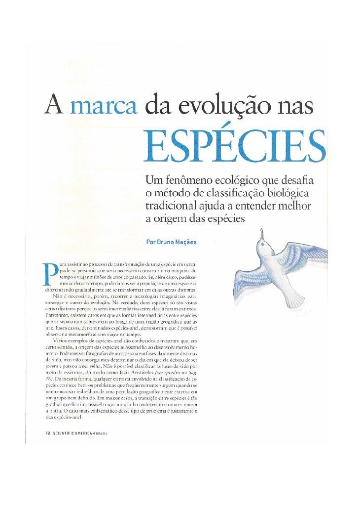 Especies Em Anel - Scientific American