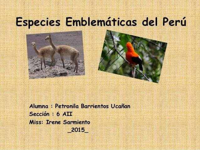 Especies Emblemáticas del Perú Alumna : Petronila Barrientos Ucañan Sección : 6 AII Miss: Irene Sarmiento _2015_