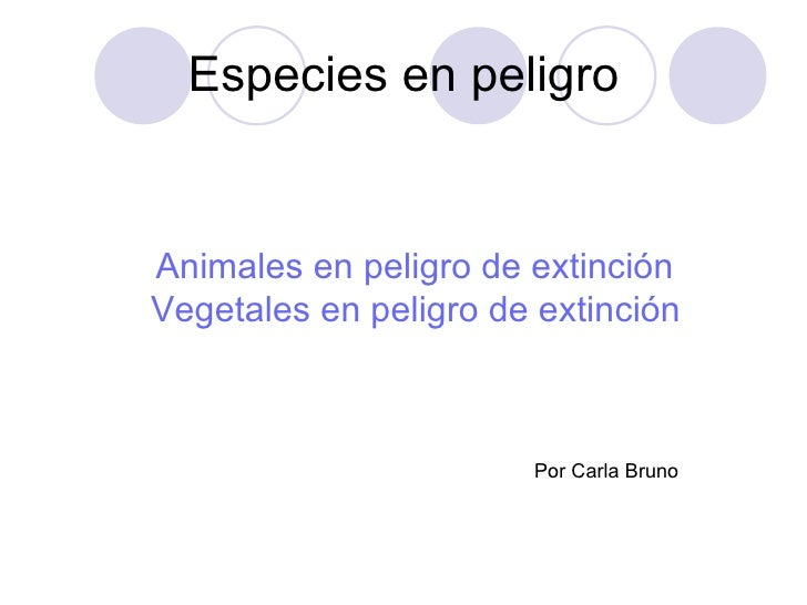 Especies en peligro Animales  en peligro de extinción Vegetales en peligro de extinción Por Carla Bruno