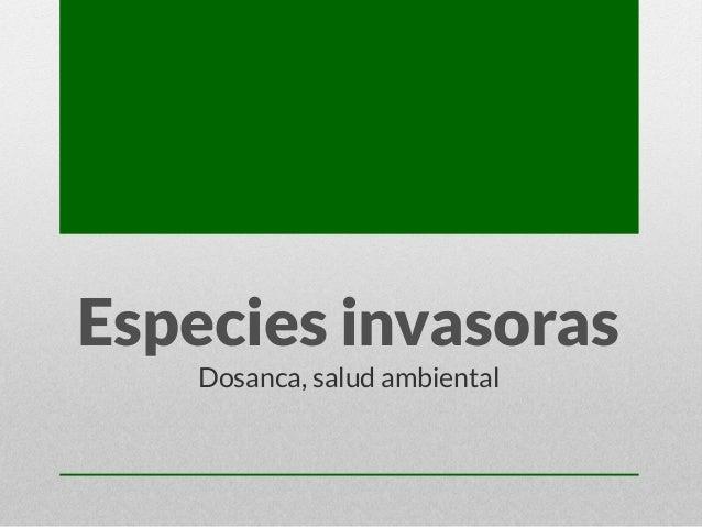 Especies invasoras Dosanca, salud ambiental