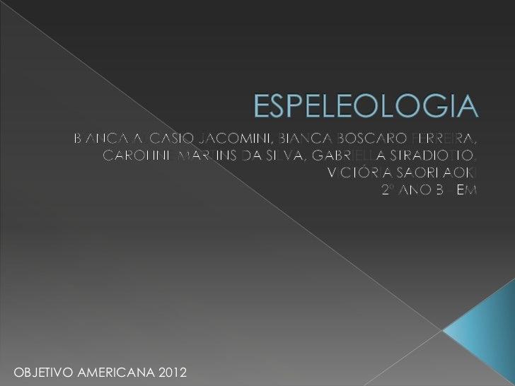 OBJETIVO AMERICANA 2012