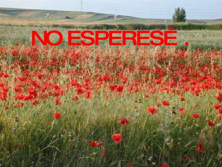 NO ESPERES….