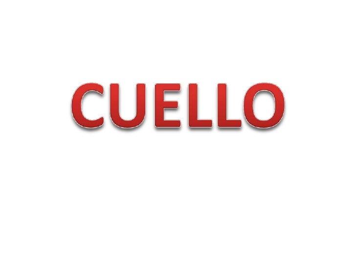 CUELLO<br />