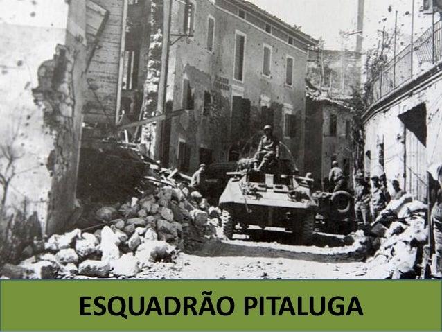 Esquadrão Pitaluga