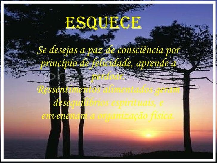 Se desejas a paz de consciência por princípio de felicidade, aprende a perdoar. Ressentimentos alimentados geram desequilí...