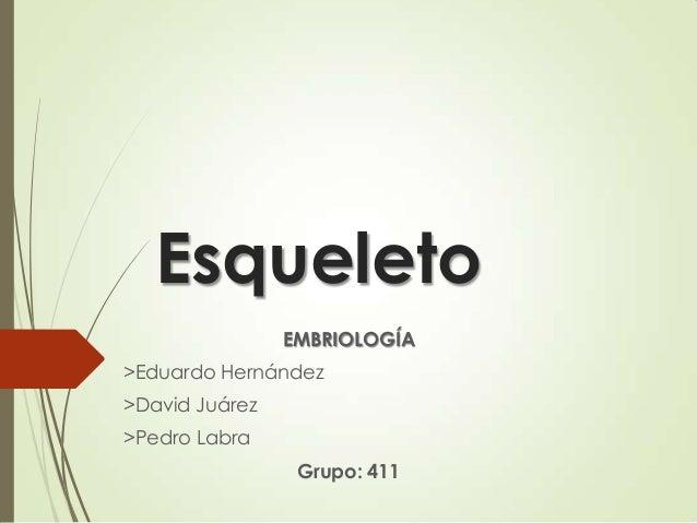 Esqueleto EMBRIOLOGÍA >Eduardo Hernández >David Juárez >Pedro Labra  Grupo: 411