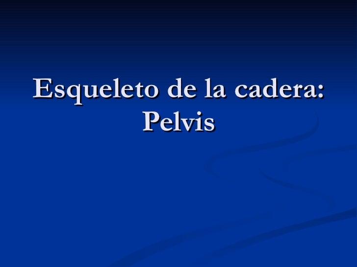 Esqueleto de la cadera: Pelvis