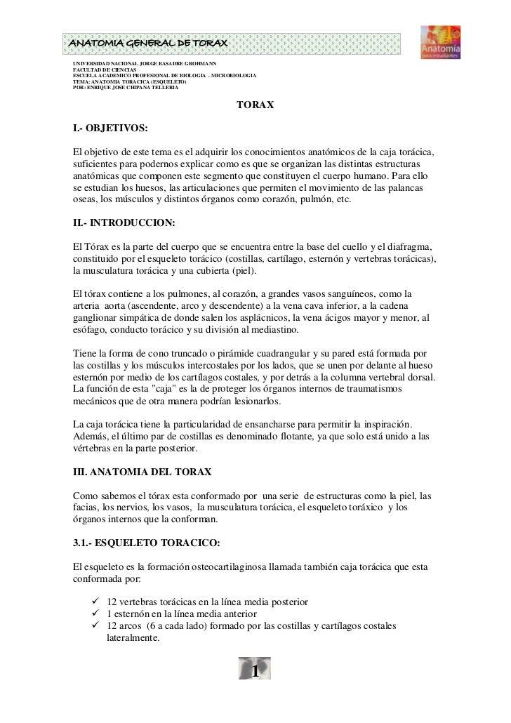 ANATOMIA GENERAL DE TORAX UNIVERSIDAD NACIONAL JORGE BASADRE GROHMANN FACULTAD DE CIENCIAS ESCUELA ACADEMICO PROFESIONAL D...