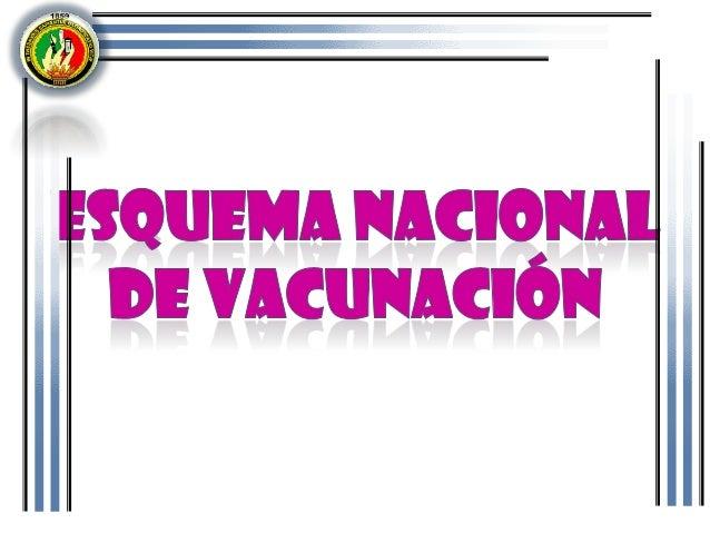 • La misión del Ministerio de Salud Pública (MSP)a través del Programa Ampliado de Inmunizaciones P.A.I. es asegurar la in...