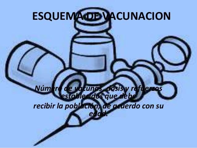 ESQUEMA DE VACUNACION  Número de vacunas, dosis y refuerzos establecidos que debe recibir la población, de acuerdo con su ...