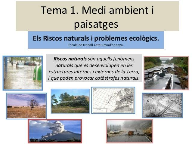 Riscos Naturals i Problemes Ecològics.