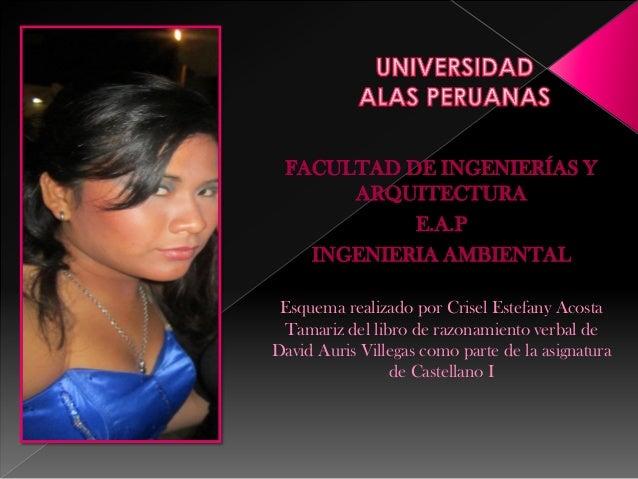 FACULTAD DE INGENIERÍAS Y ARQUITECTURA E.A.P INGENIERIA AMBIENTAL Esquema realizado por Crisel Estefany Acosta Tamariz del...