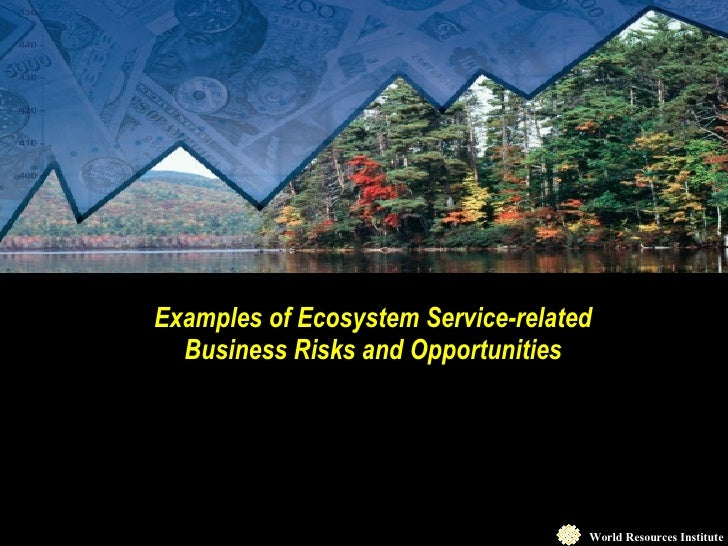 Examples of Ecosystem Service-related Business Risks and Opportunities