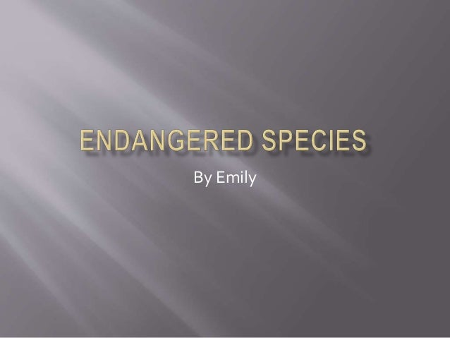 Endangered species essay