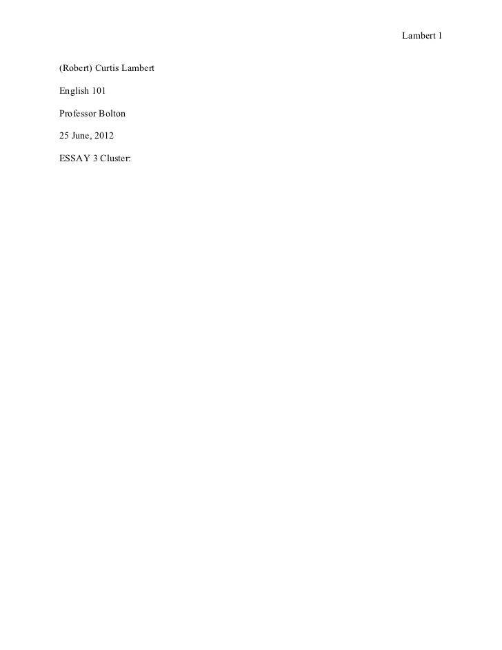Essay 3 cluster 27 june 2012