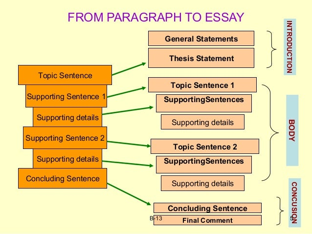 Organization essay writing