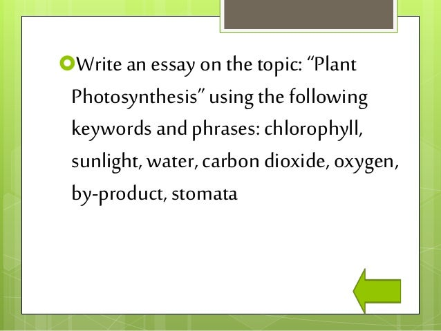 Essay on photosynthesis