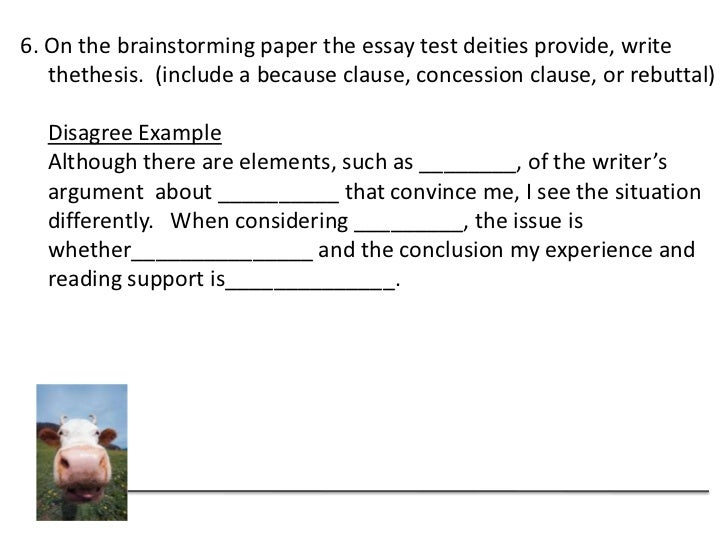 How to transition to a rebuttal in an essay
