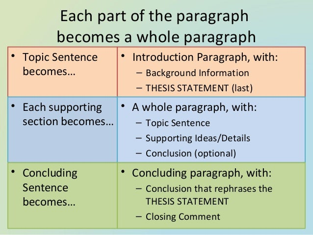 Structure of a body paragraph in an essay