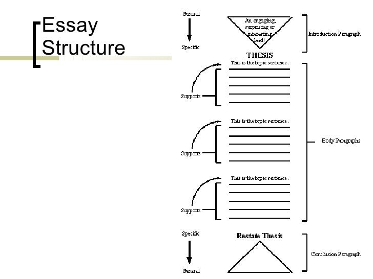 Name and discuss the structure of academic essay writing