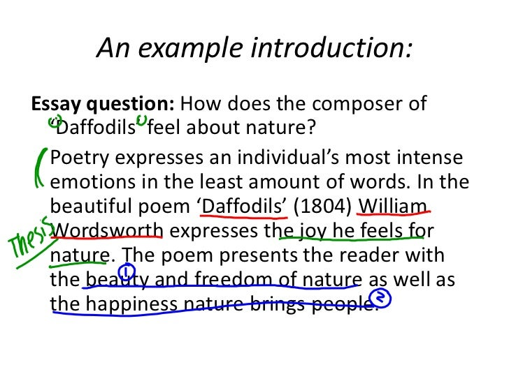 introduction example for essays