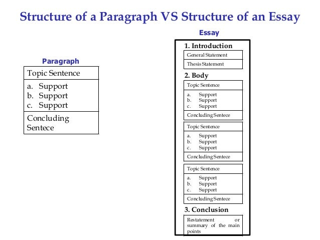 structure of a paragraph vs structure of an essay essay