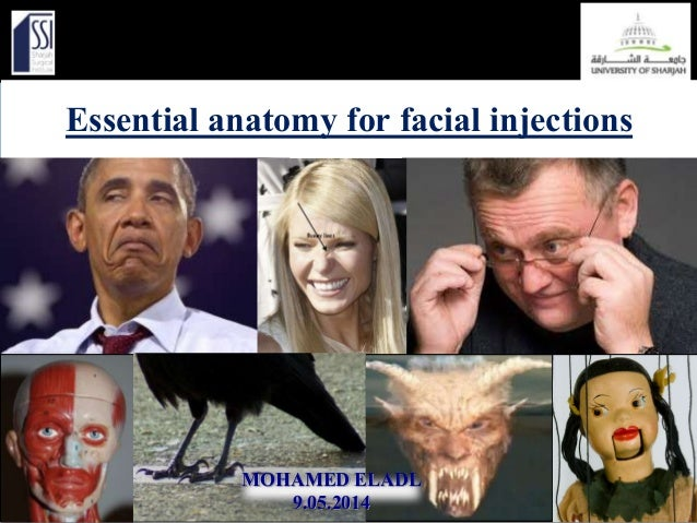 Essential anatomy for facial injections MOHAMED ELADL 9.05.2014
