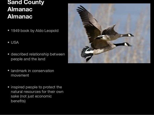 sand county almanac summary