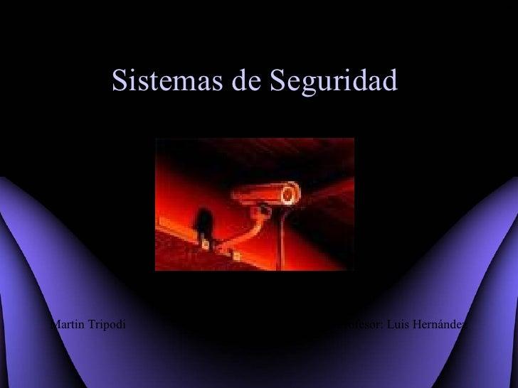 Sistemas   de Seguridad Martin Tripodi Profesor: Luis Hernández *
